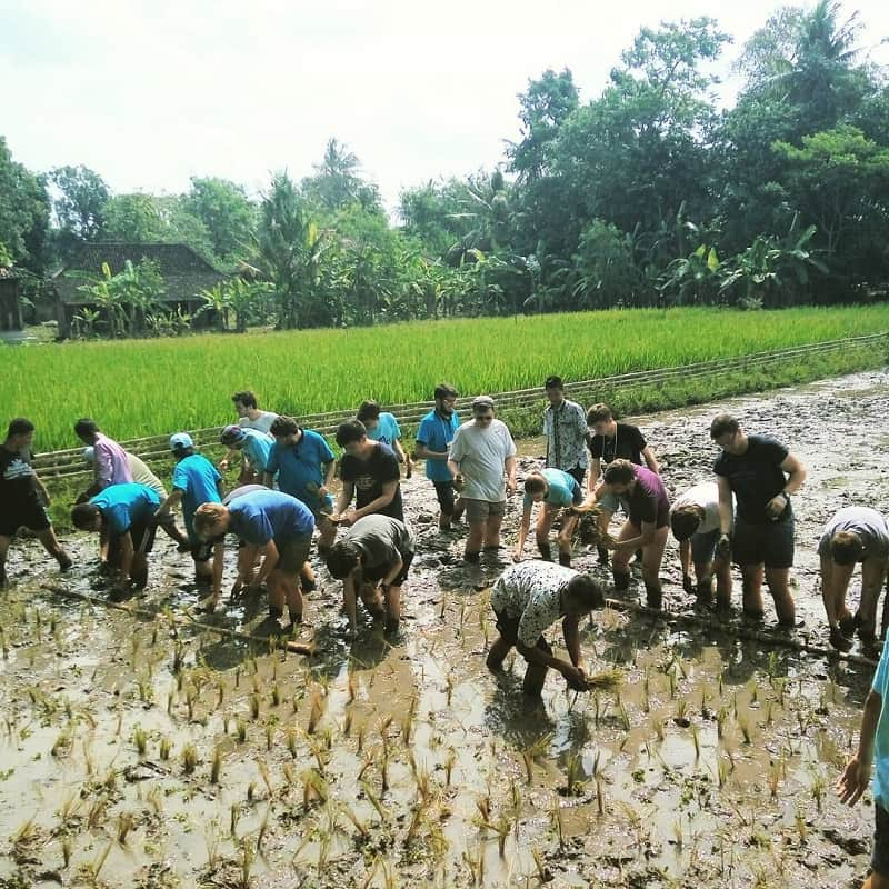 Desa Wisata Tembi Yogyakarta Sumber Instagram desawisatatembi-min
