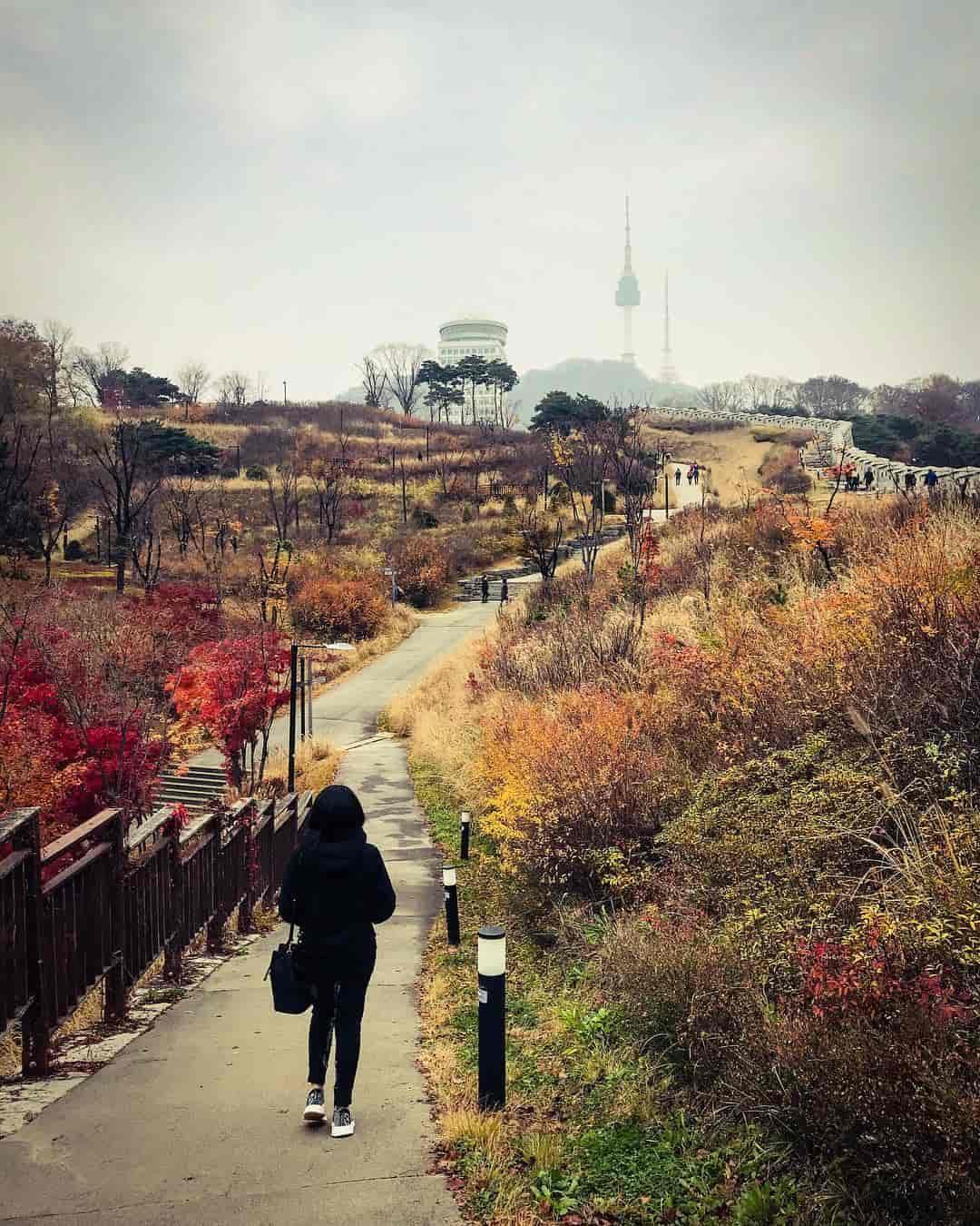 Namsan Park Sumber Instagram s.lluvjp-min