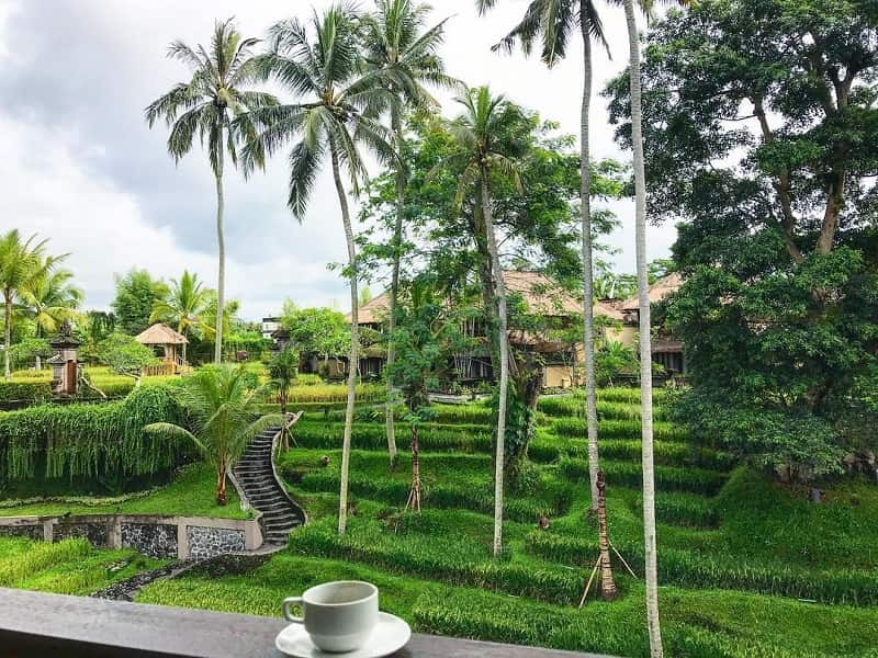 Ubud Bali Sumber Instagram tariktravels-min