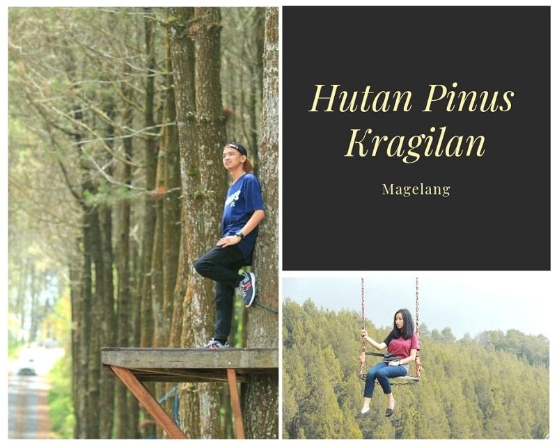 Hutan Pinus Kragilan Sumber Instagram iyas_ic & hobbyhf