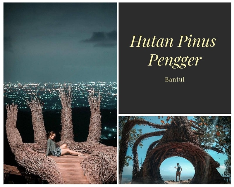 Hutan Pinus Pengger Sumber Instagram masmeya & bimasatriya7